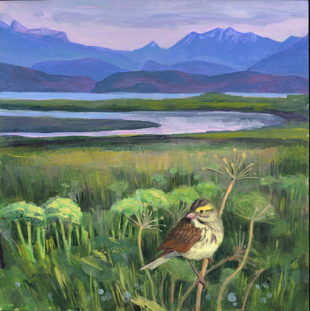 Savannah Sparrow Art | Studio Girard