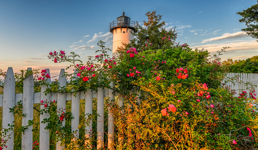 East Chop Light Summer Roses Art | Michael Blanchard Inspirational Photography - Crossroads Gallery