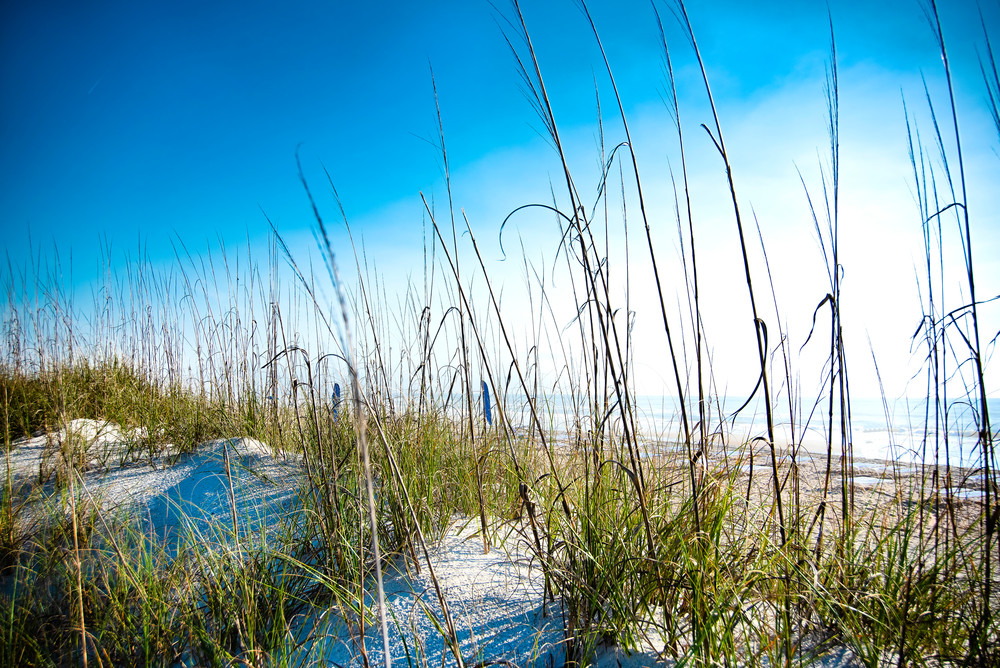 View From The Dunes on Amelia Island