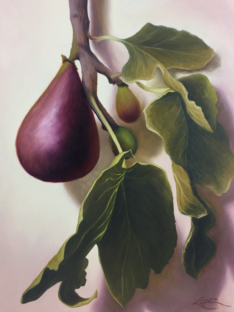 Fig Tree Beauty Art | Gema Lopez Fine Arts
