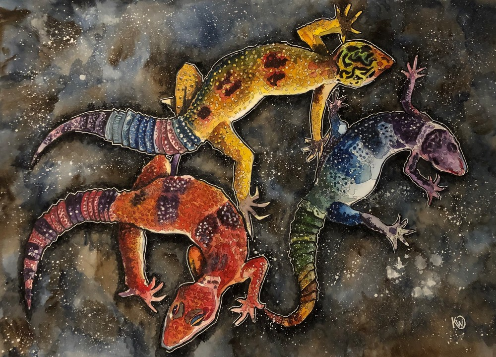 Three Geckos