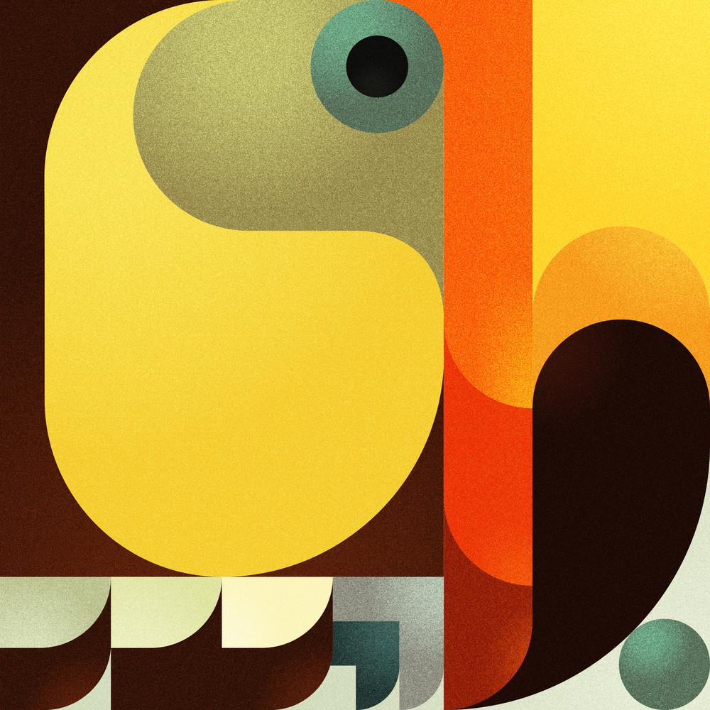 Toucan Art | Romanova Art