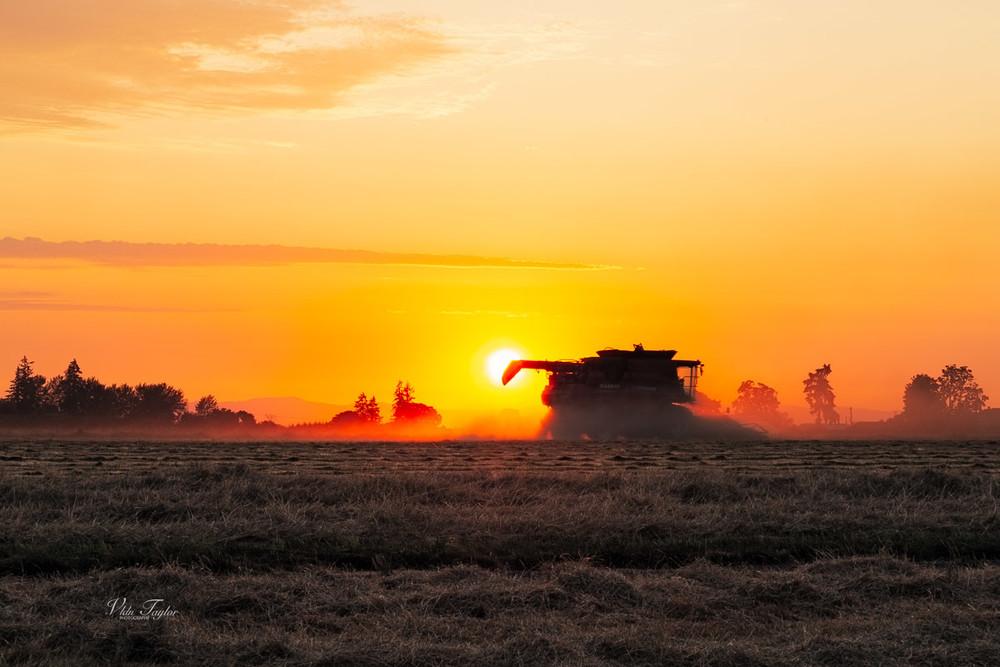 farmland-3
