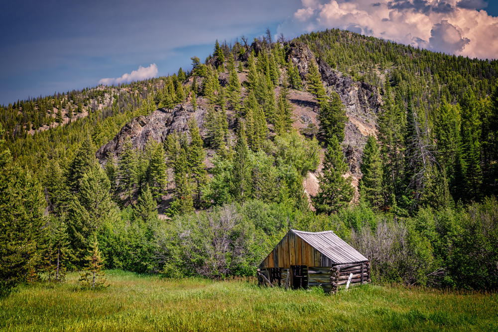 Abandoned Cabin, Custer, ID   Shop Photography by Rick Berk