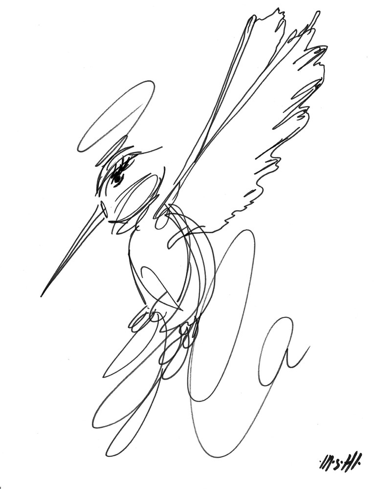 Hummingbird  Art | ashalmonte