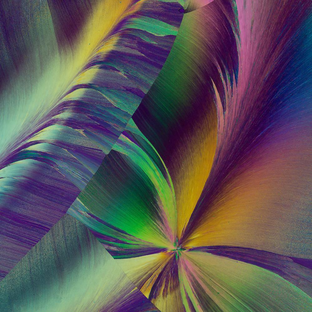 Vanilla Silk Art | Carol Roullard Art