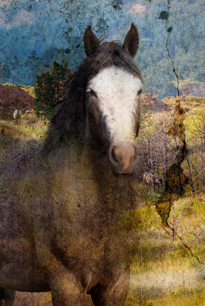 Tapestry Of Sage Photography Art | Deb Little Photography