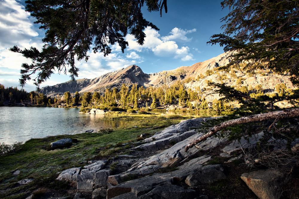Beneath The Pines Art | Chad Wanstreet Inc