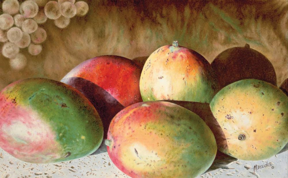 Mangos   Print Art   Mercedes Fine Art