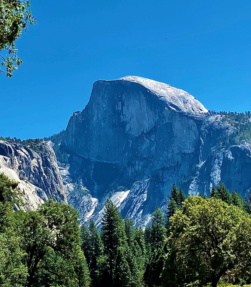 Magnificent View From Yosemite National Park Art | Coat Of Many Colors