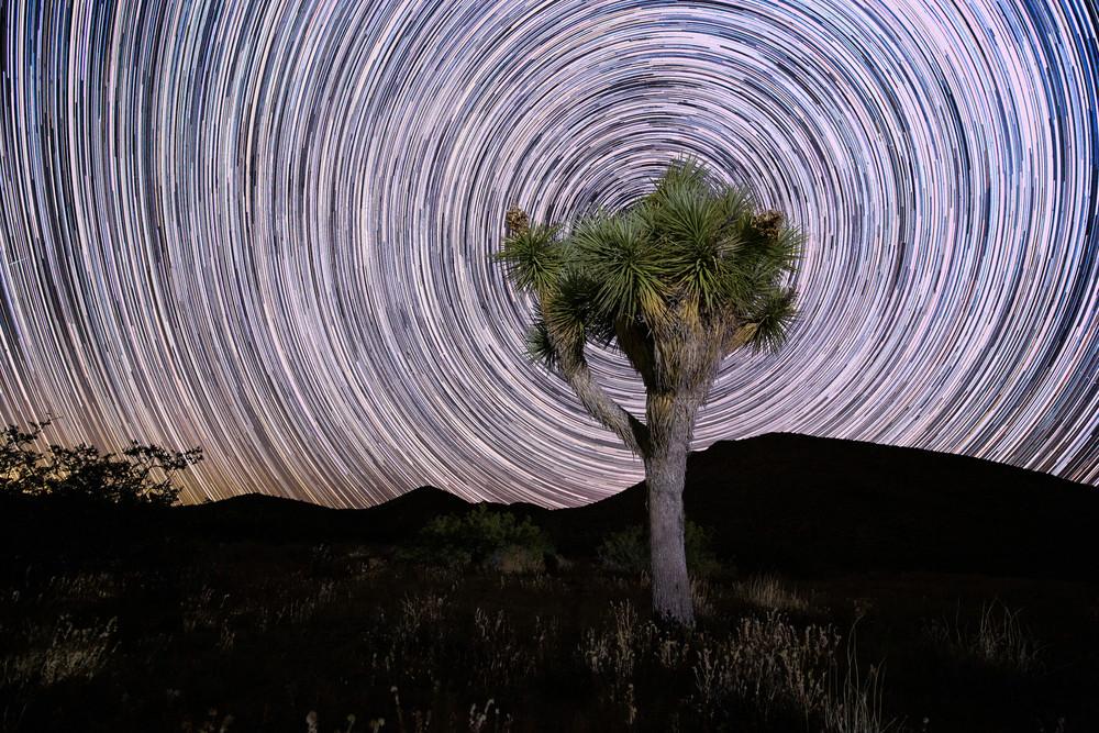 Desert Trip Art | Chad Wanstreet Inc