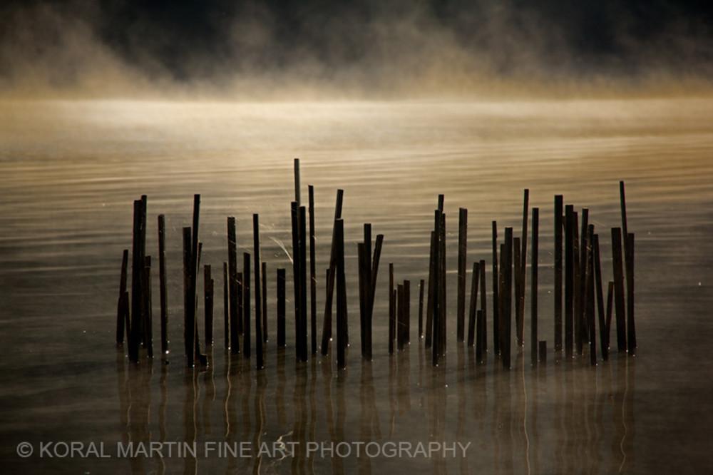 Sticksfog Ky Lake Barkley 8692   Photography Art | Koral Martin Healthcare Art