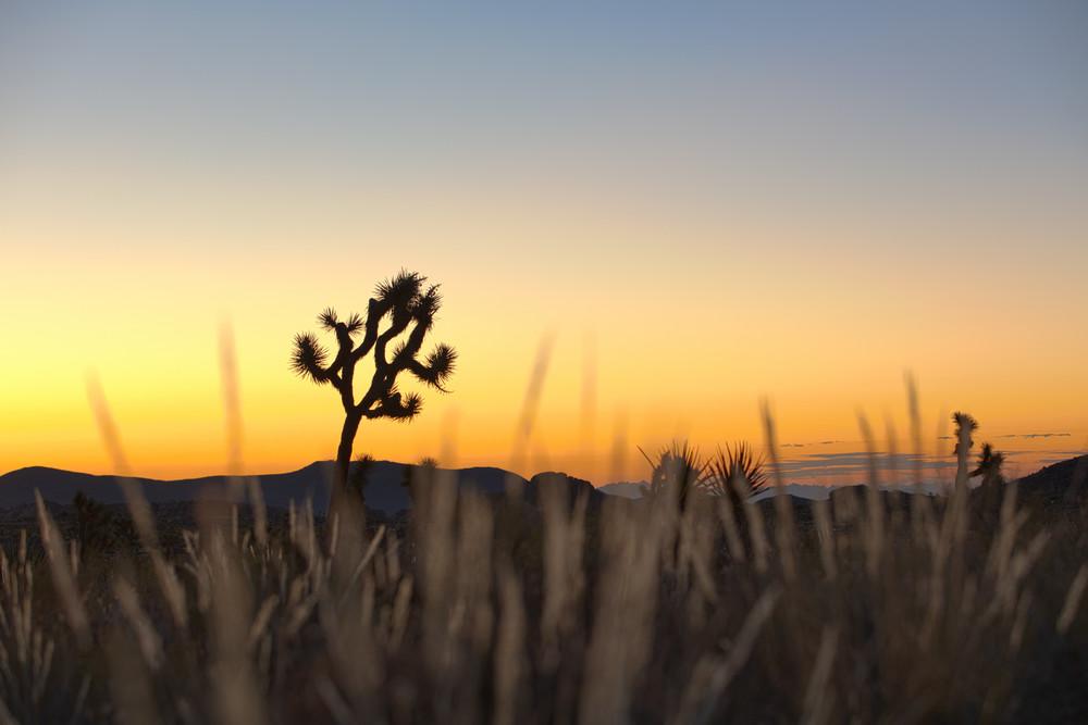 Encroaching Dawn Art | Chad Wanstreet Inc