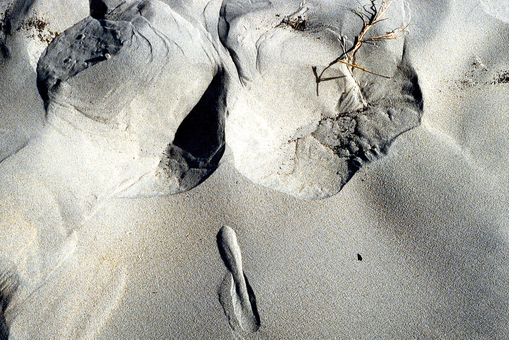 San Diego Beach Erotica Abstract Fine Art – Sherry Mills