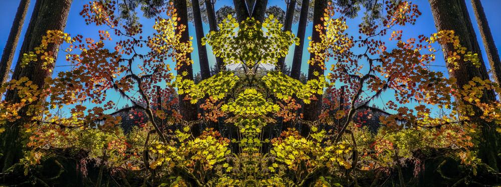 Mirror 1713_Blue Sky Autumn 7