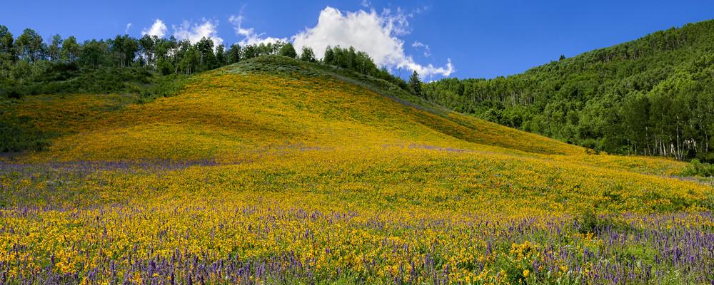 Brush Creek Hill