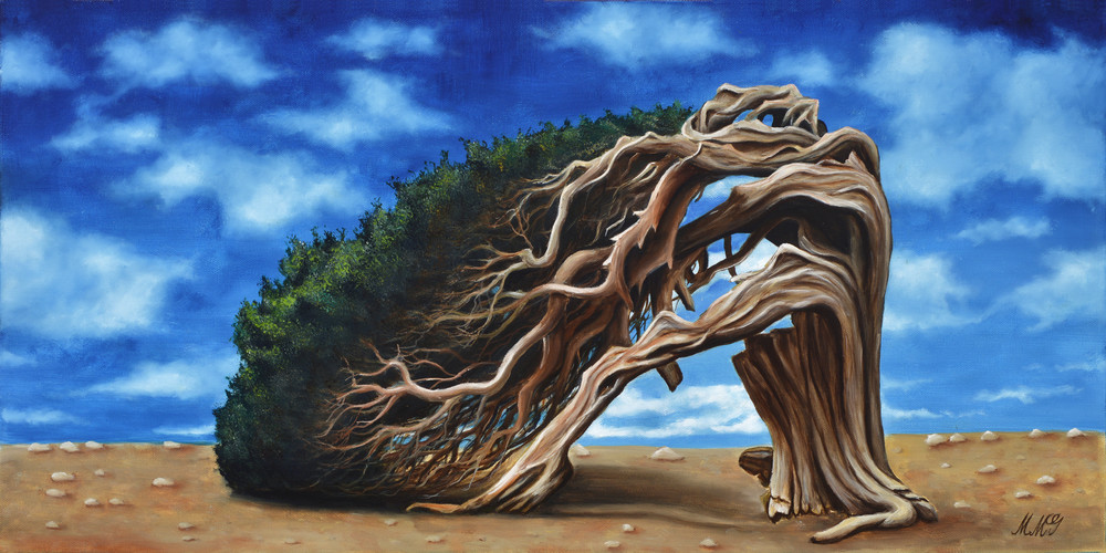 Windswept Dali Art   MMG Art Studio   Fine Art Colorado Gallery