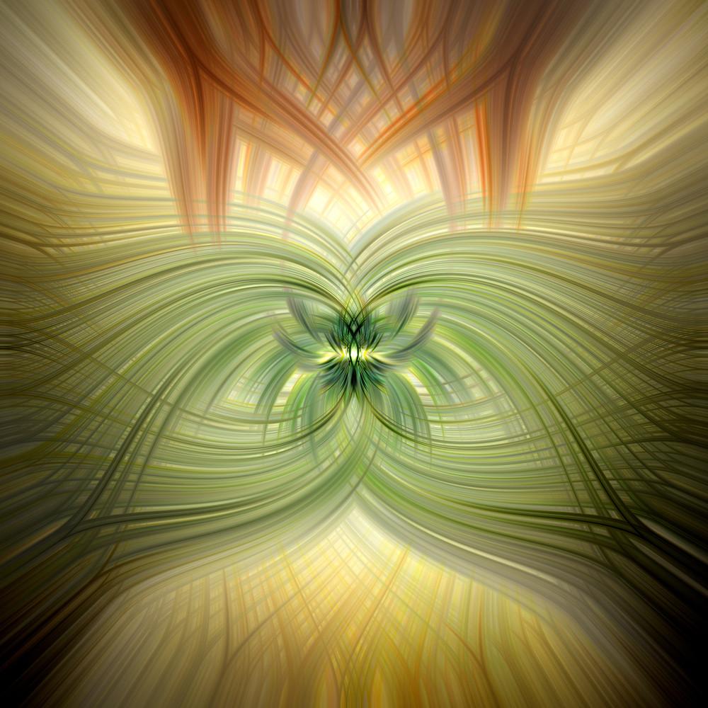 Cacti A2348 Art | Roy Fraser Photographer