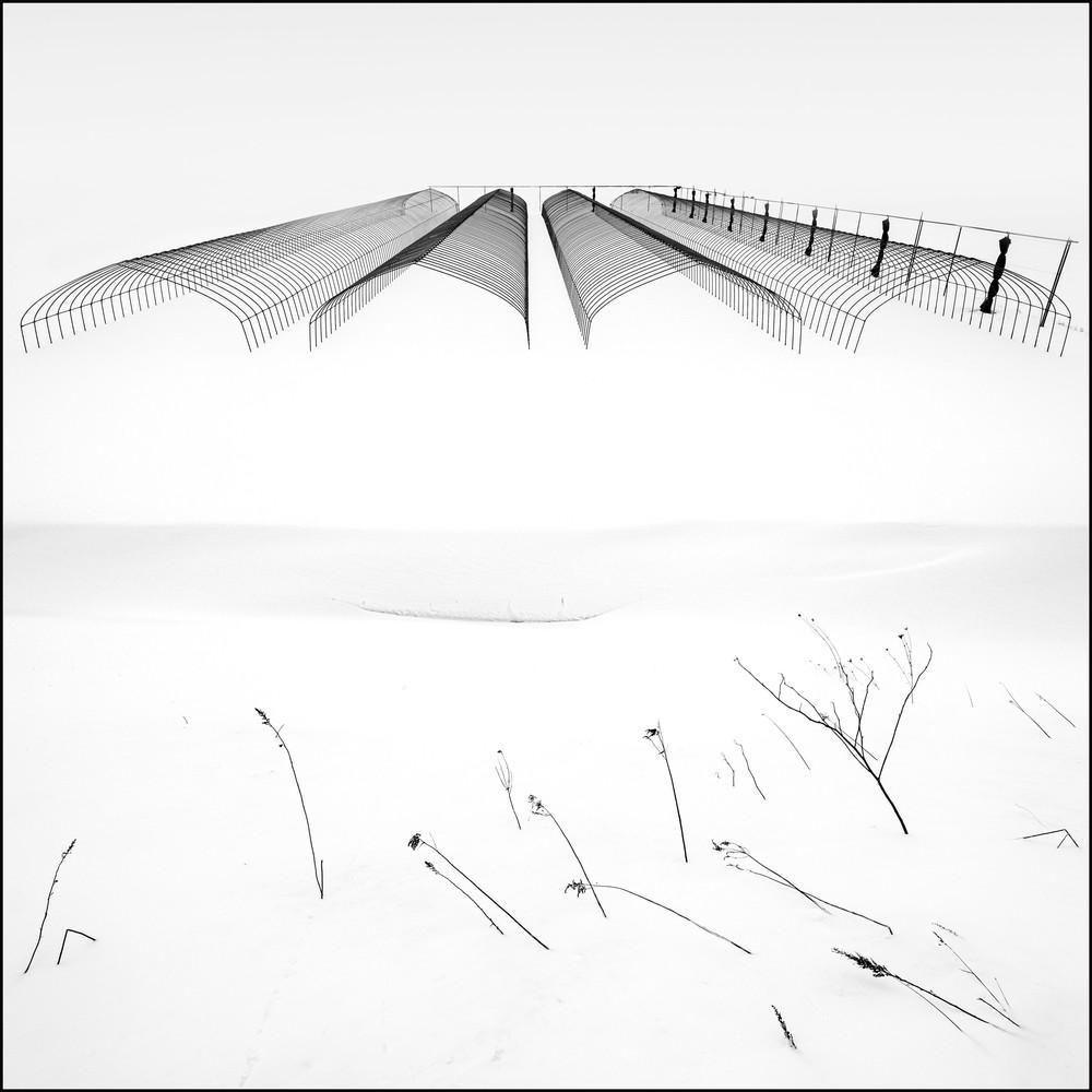 Hokkaido Study14 Art | Roy Fraser Photographer