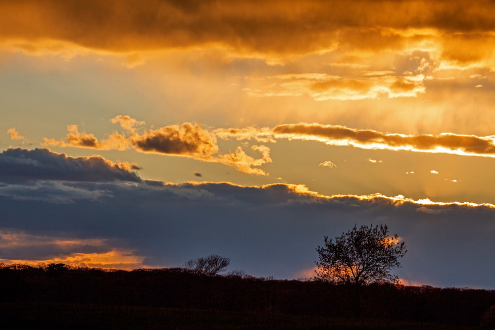 Golden Sunset Art   capeanngiclee
