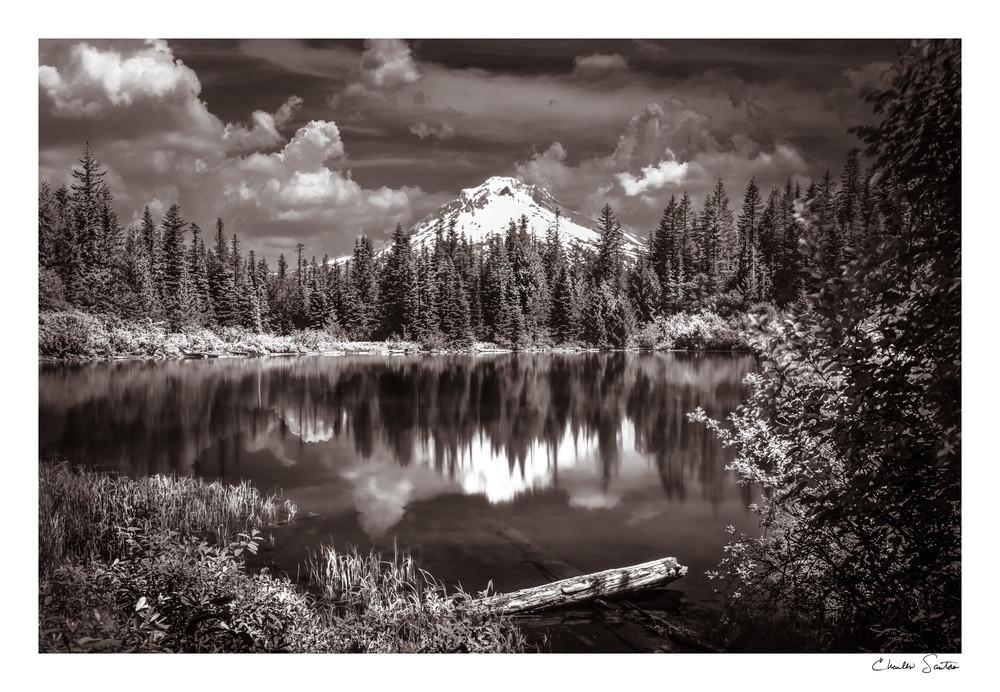Beyond the Pond Art Print