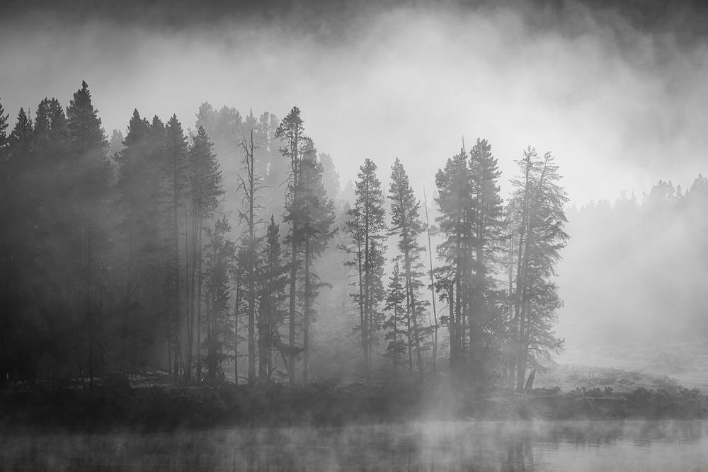 Misty River  Yellowstone Photography Art   Casey McFarland Photography