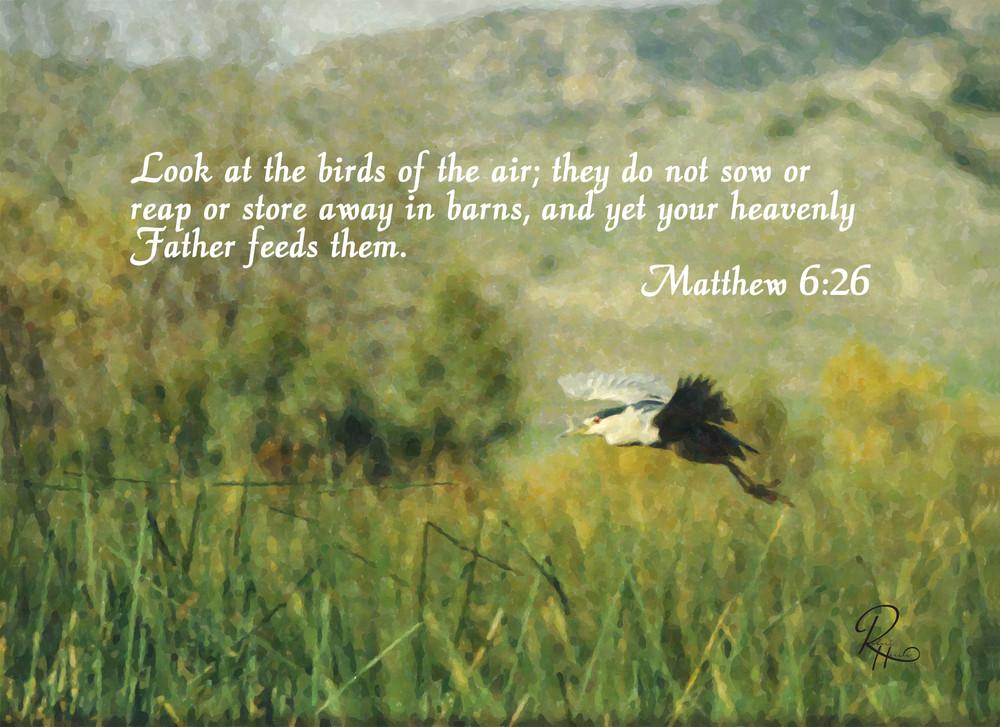 Matthew 6:26: Shop prints   Lion's Gate Photography