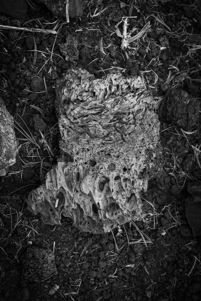Forged  Craters Of The Moon Photography Art | Casey McFarland Photography
