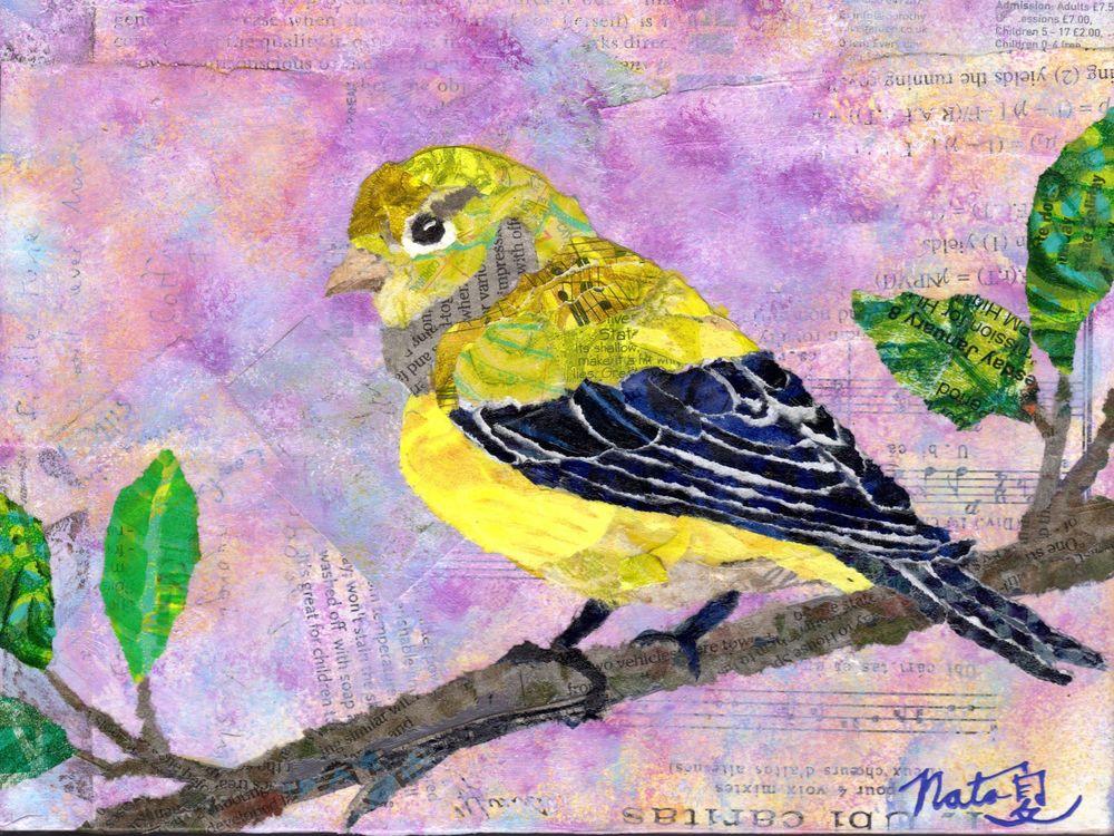 Backyard Birds: Mrs. Lesser Goldfinch Art | Poppyfish Studio