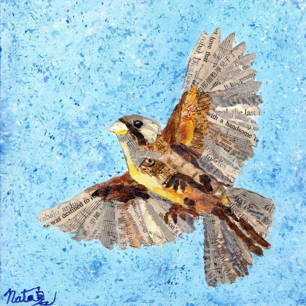 Flight Of The Sparrow Art   Poppyfish Studio