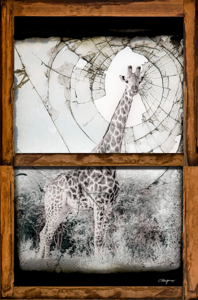 """""""Confinement, Day 3, Print, 2020"""" mixed media artwork by Carolyn A. Beegan"""