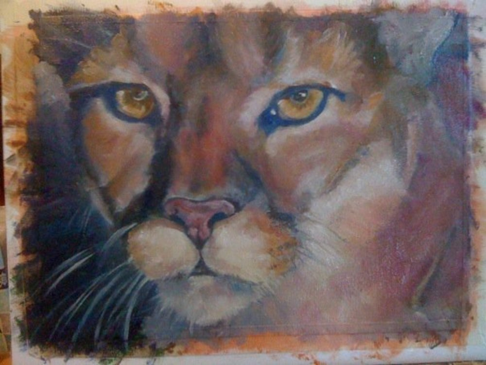 Puma Sunset Art   Nosco Fine Art