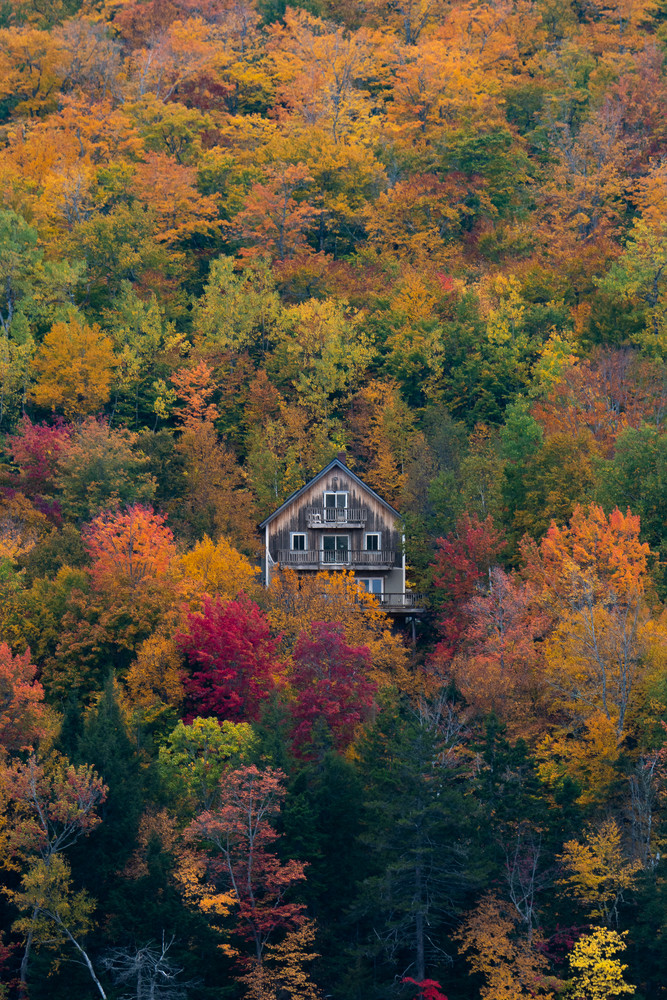 Autumn in Maine II