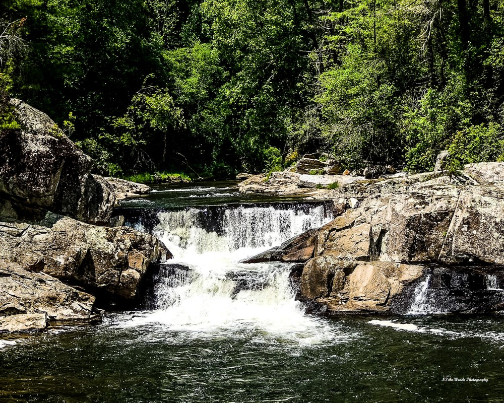 Waterfall Photography Art   N2 the Woods Photography