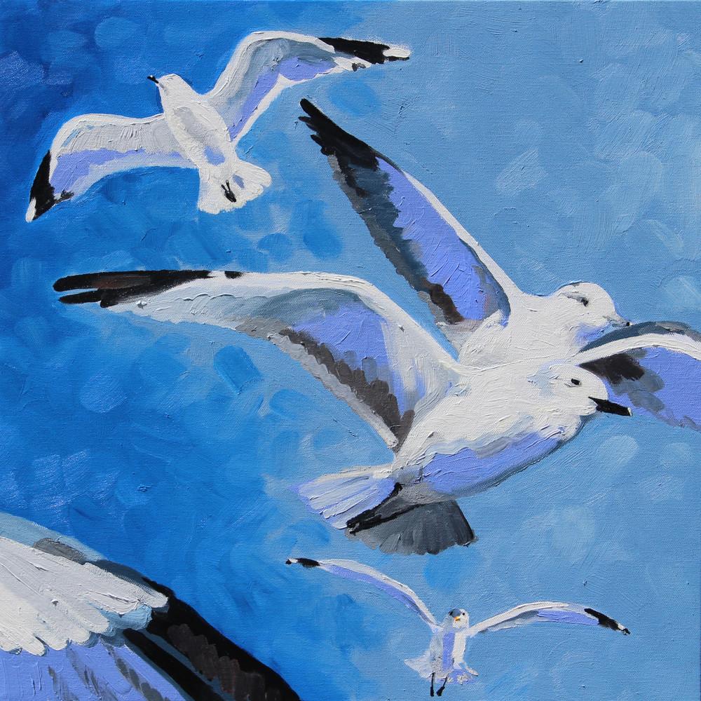 gull frenzy I
