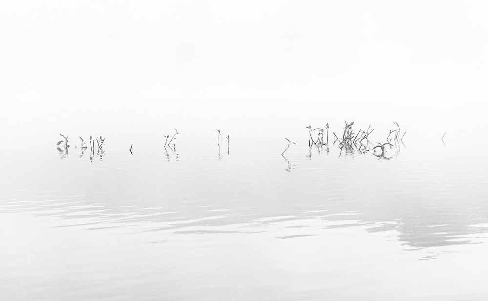 Zen - Black and White early morning reflection on water in Northern California photograph