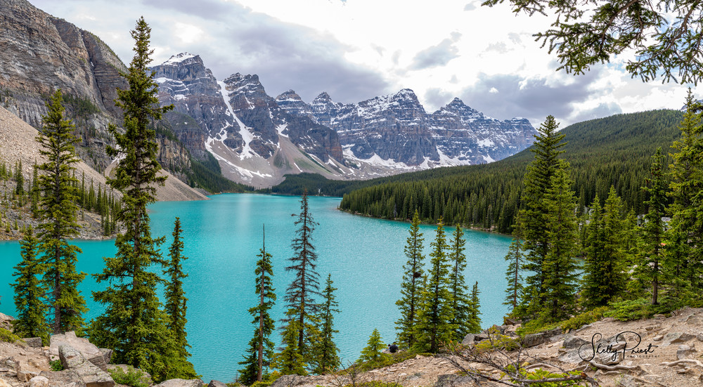 Moraine Lake   Panoramic Photography Art | Shelly Priest Photography