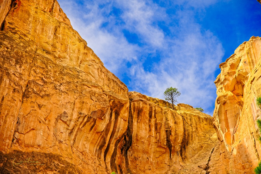 Lone Tree Ridge - A Fine Art Photograph by Marcos R. Quintana