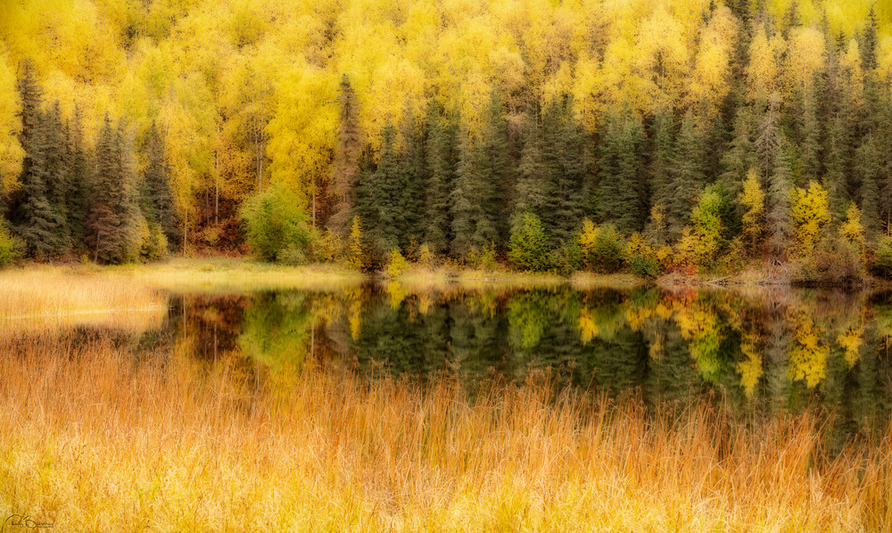 Fall colors along pond