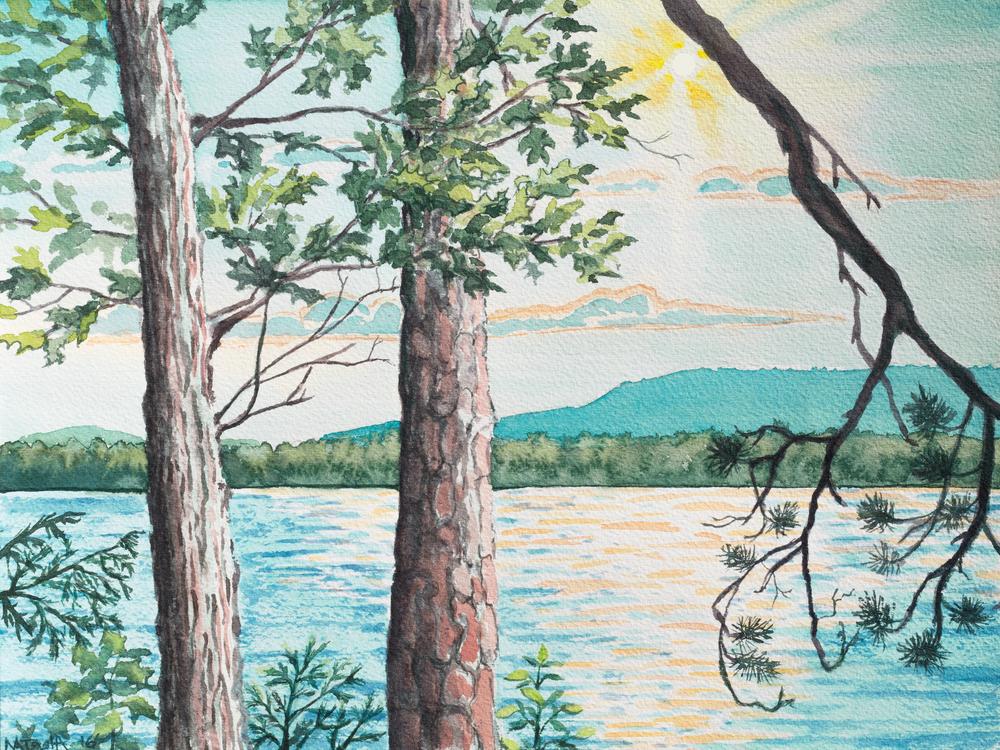 'Oak and Scotch Pine Trees' Art for Sale.