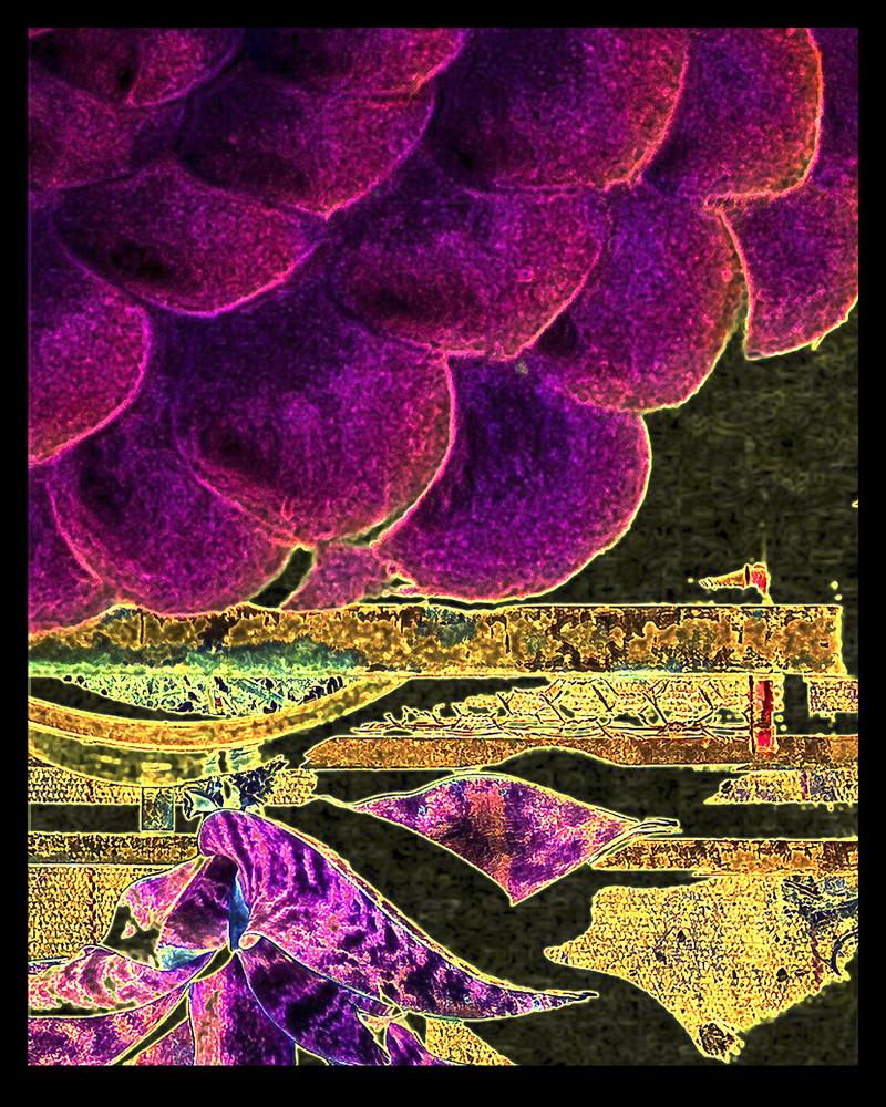 Grape Fest Art | Anne LaBrie Fine Art