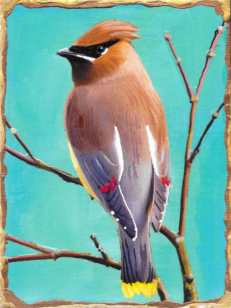 Cedar Waxwing Art | Channe Felton Fine Art