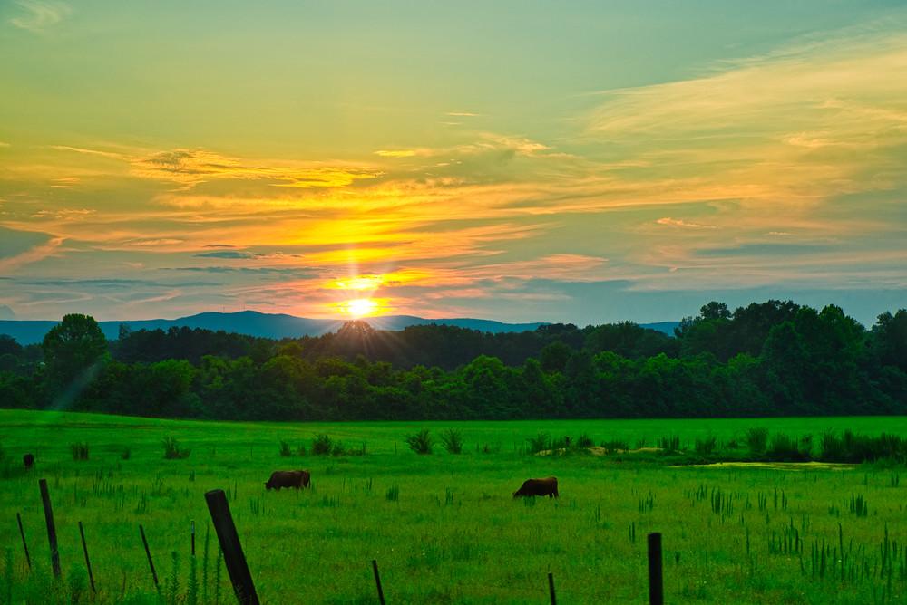 Pasture in Oxford, Alabama