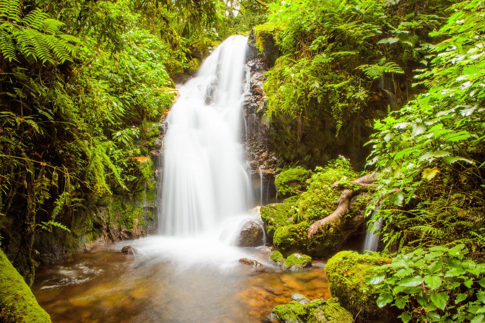 Muyanga Falls Of Bwindi Photography Art | Brokk Mowrey Photography
