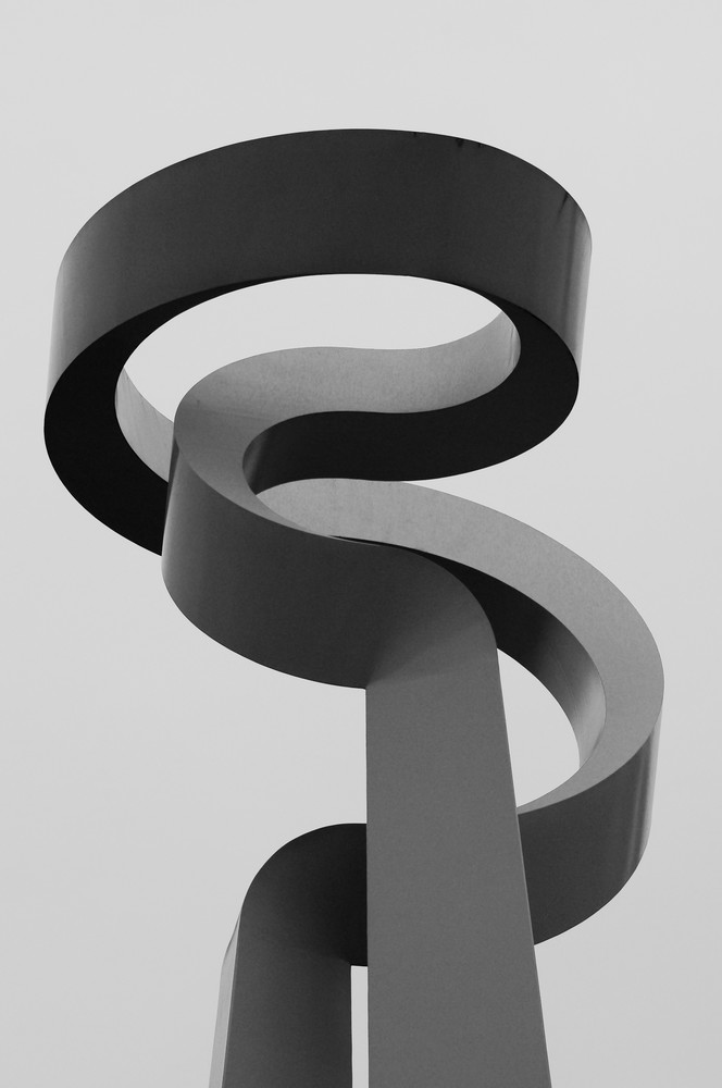 Curvy Sculpture in Black and White