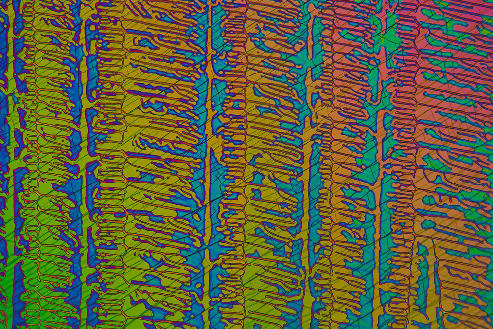 Hendrix Connection Art | Carol Roullard Art