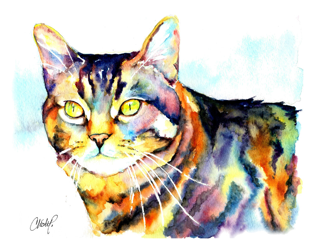 Punky The Tabby Cat Art | Christy! Studios