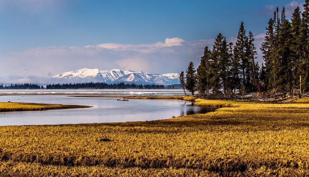 Image of Fishing Bridge Yellowstone National Park