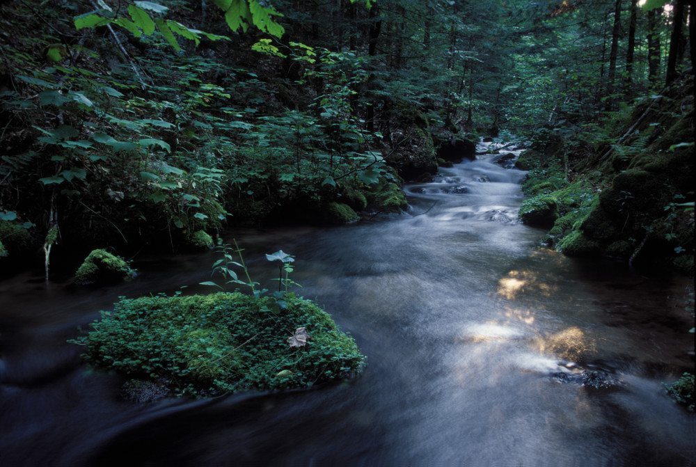 Mossy Creek, Huron Mountains
