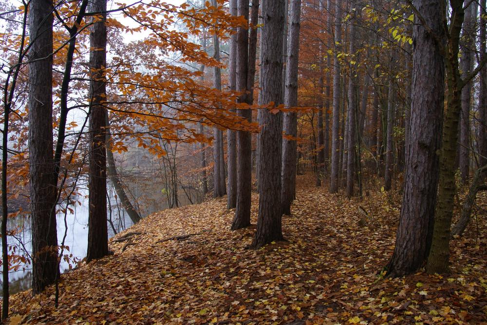 Autumn Huron River, Proud Lake Recreation Area, Michigan.